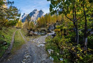 Autumn alpine stream view from mountain hiking path to Tappenkarsee, Kleinarl, Land Salzburg, Austria.