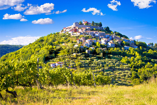 Town of Motovun on picturesque vineyards hill
