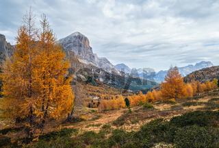 Colorful autumn alpine Dolomites mountain scene, Sudtirol, Italy. Peaceful view from Falzarego Path.