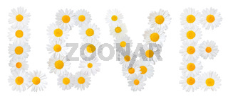 Many white daisies (Marguerite) formed the word 'Love', isolated on a white background.