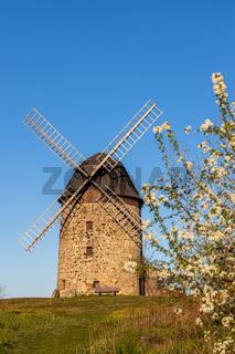 Teufelsmühle Thale Warnstedt Turmwindmühle
