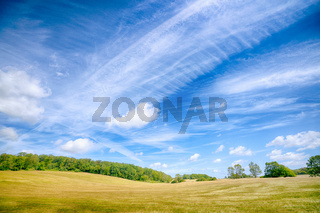 Colorful landscape in a rural environment