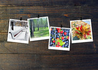 Photos of four seasons attached to dark wooden wall. Seasons on dark background. Photo of four seaso