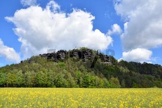 Papststein in der Saechsischen Schweiz
