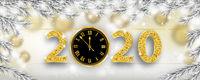 2020 Frozen Twigs Snowfall Christmas Header