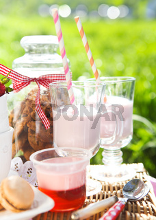 Picnic with strawberry, cookies, strawberry milk, jelly and macaroons