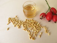 Rose hip essential oil made from wild dog rose seeds