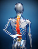 3D illustration showing back pain or pain on the spine