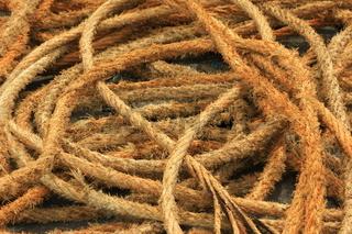 Seile in einem Fischereihafen