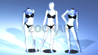 Virtual Manikins