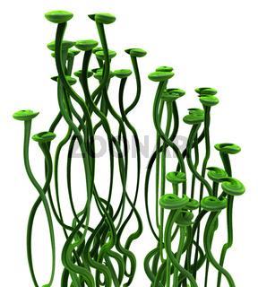 Plant Vines Green, Pad Tendrils