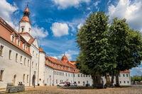annaburg, deutschland - 17.07.2019 - schloss mit denkmal von anna kurfürstin von sachsen