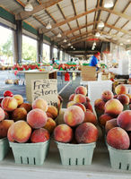 Fresh peaches at the North Carolina State Farmers Market in Raleigh, NC