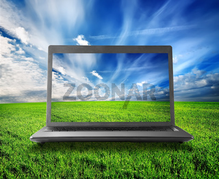 Green field and laptop