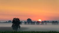 Foggy sunrise over the Donaumoos in Bavaria