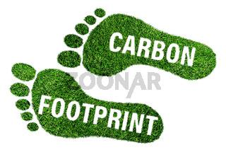 carbon footprint concept, barefoot footprint made of lush green grass