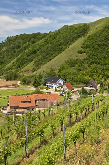 Alt-Vogtsburg,Kaiserstuhl region, Germany,