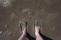 Feet take a mud bath in the Wadden Sea