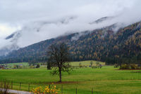 Cloudy and foggy autumn pre alps mountain countryside