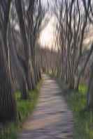 Avenue blurred