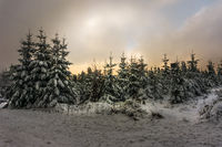 Winter in the Thuringian Forest