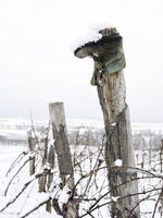 Old boot on a pole in winter