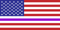 thin purple line flag