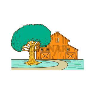 American Barn Oak Tree Mono Line Color