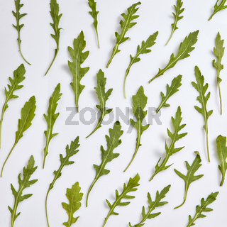 Plant pattern from green freshly picked natural organic arugula leaves.