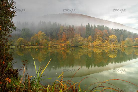 Lake in the Upper Danube Nature Park