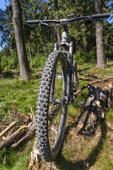 Tire of a mountain bike