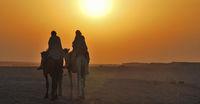 reiter kamel mit sonne panorama