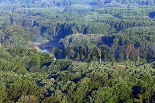 Donau-Auwälder bei Hainburg, Oesterreich