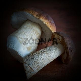 Steinpilz und Birkenpilz auf einem Küchentisch