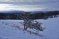 winter landscape on the swabian alps