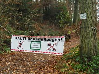 Warnung, Baumfällungen