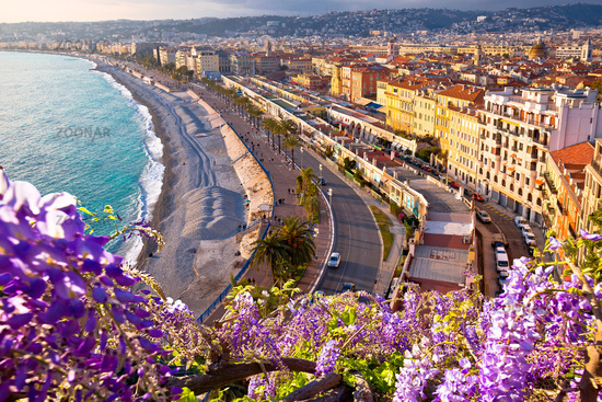 City of Nice Promenade des Anglais waterfront flower view, French riviera