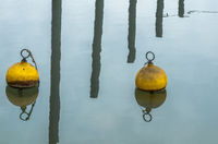 Yellow Mooring Buoys and Harbor Poles Reflecting on Calm Water