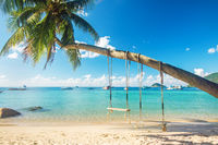 Beautiful tropical island beach with coconut palm trees and two swings