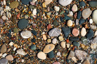 Stone natural background. Wet pebble stones in water.
