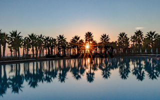 Sonnenuntergang am Pool mit Palmen in Salgados in Portugal
