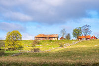 Farm on a hill with an old barn in the spring