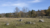 Landscape in the Bohemian Forest