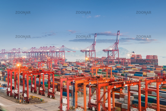 shanghai container port in sunset