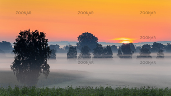 Foggy sunrise over the Donaumoos in Bavaria