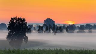 Nebliger Sonnenaufgang ueber dem Donaumoos in Bayern
