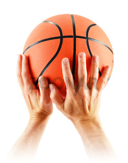Hands and basketball isolated on white background