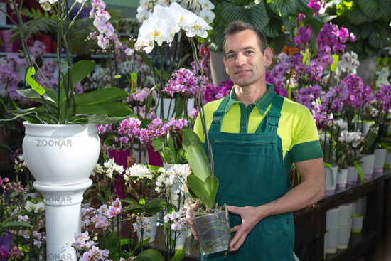 Florist in flower shop posing with orchid