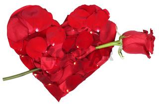 Herz aus Blüten mit Rose Thema Liebe zum Valentinstag oder Muttertag