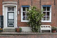 Rose bush in front of a brick facade at Greetsiel